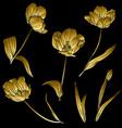 golden tulips set vector image