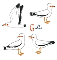 Hand drawn seagulls collection vector image vector image