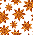 anise seamless background vector image