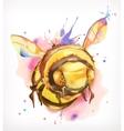 Watercolor painting honey bee vector image