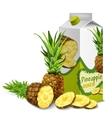 Juice pack pineapple vector image vector image