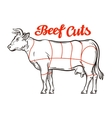 Beef chart meat cuts or butcher shop vector image