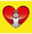 big siberian husky sitting vector image