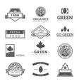 Fresh and natural food logos vector image
