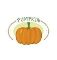 Fresh orange pumpkin badge isolated vector image