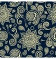Ethnic pattern with mandala cucumbers paisley vector image