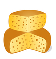 cheese cut into pieces on a white background vector image vector image