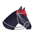 horse pony head stallion isolated color farm vector image