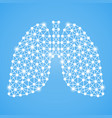 human lungs isolated on a blue background vector image