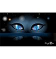 night halloween eyes vector image