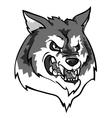 Wolf mascot team label design vector image