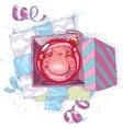 Reflecting Santa Claus vector image