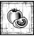 Retro tomato black and white vector image