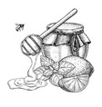 honey with lemon and mint drawing jar vector image