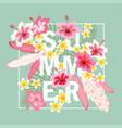 summer greeting card vector image