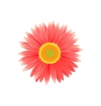Beauty Flower Design Flat Isolated vector image