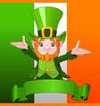 happy leprechaun vector image