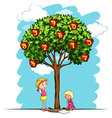 Apple tree with numbers vector image