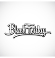 Black Friday Hand Lettering vector image