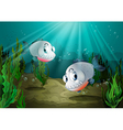 Two fishes with sharp teeth under the sea vector image