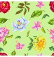 Seamless pattern with China flowers Bright buds vector image