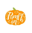 Pumpkin Name Of Vegetable Written In Its vector image