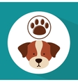 Veterinary dog care paw print icon vector image