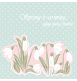Snowdrop flowers Blossom spring card vector image