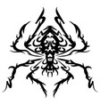 beautiful spider exotic insect tattoo vector image