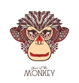 Monkey Color Face vector image