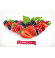 Forest berry Sweet fruit isolated on white vector image