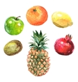 Watercolor Fruits Set vector image