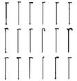 walking sticks vector image