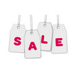 hanging price tags with inscription sale white vector image
