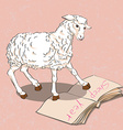 sheep reading a book vector image