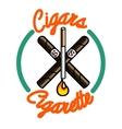 Color vintage smoking emblem vector image