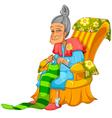 granny knitting vector image