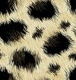 Leopard spots fur in a seamless pattern vector image