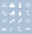 Many icons winter holiday vector image