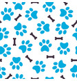 seamless pattern of blue animal paws with bones vector image