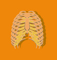 chest thorax paper sticker on stylish background vector image