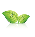 object leaves vector image vector image