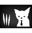Cat scratches and torn paper vector image