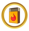 Box of matches icon vector image