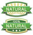 Natural vector image