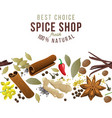 seamless border with spices vector image vector image