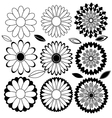 Flowers black and white vector image