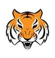 Tiger icon for logo design t-shirt print Tiger vector image