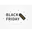 Black Friday 20 percent discount vector image