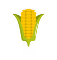 corn icon flat style vector image